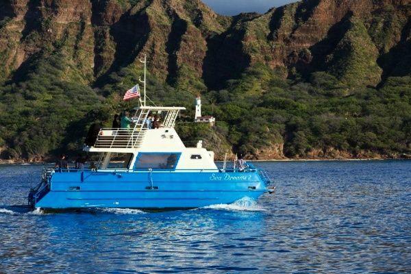 Hilton Turtle Reef Snorkel