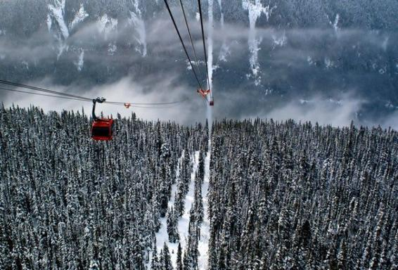 1-Day Whistler City Tour