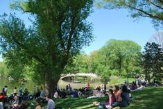 free nyc walking tours:Central Park Walking Tour