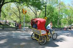 excursion sequoia park depart e san francisco:Central Park Pedicab Tour