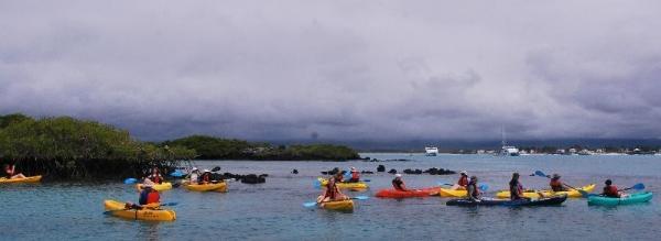 8-Day Galapagos Adventure: San Cristobal - Santa Cruz - Isabela