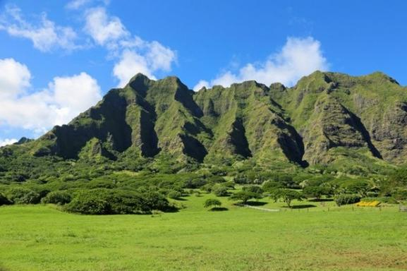 Oahu Island North Shore Adventure