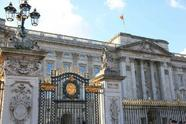 Buckingham Palace Tour + Changing of the Guard w/ English Tea