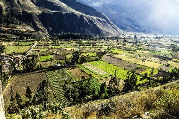 8-Day Peru Adventure: Amazon - Cusco - Machu Picchu