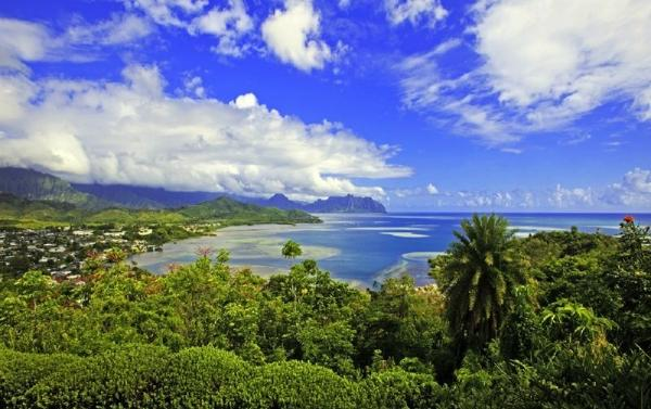 1-Day Kaneohe Bay Sightseeing and Snorkeling