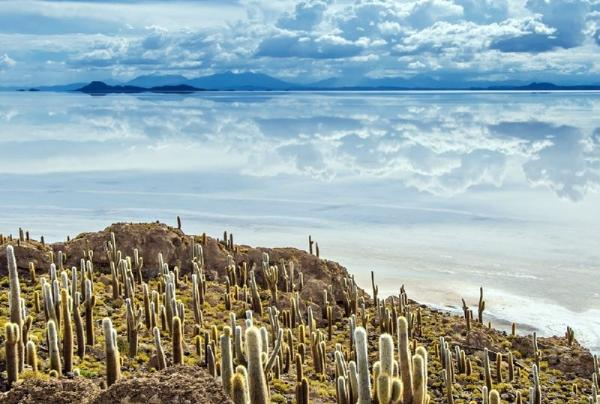 5-Day Tour of Bolivia Salt Flats: Mirror of the Sky