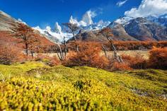 andrea bocelli aug 15 tour packages:15-Day Patagonia Tour: Los Glaciares NP - El Calafate - Torres del Paine NP