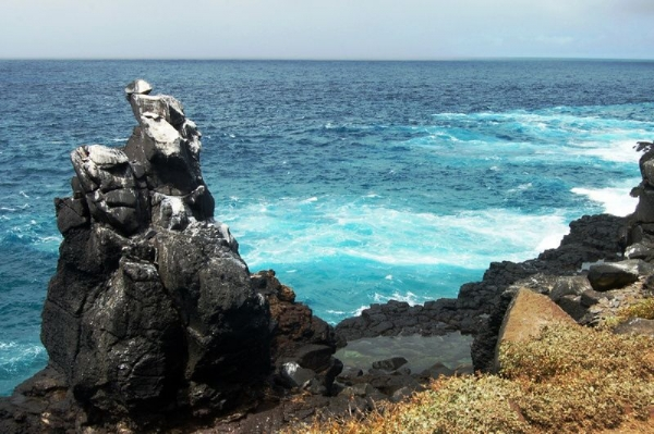 Legacy Of The Incas With Galapagos Cruise