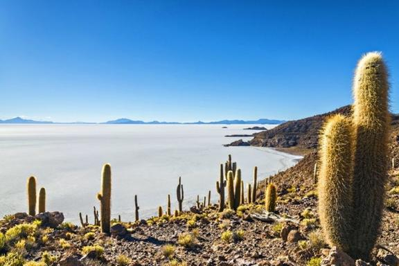 11-Day Peru and Bolivia Tour