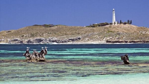 1-Day Rottnest Island Train & Tunnel Tour