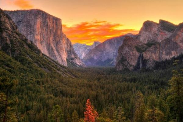 7-Day Yosemite National Park, Las Vegas, San Francisco Bus Tour**From Los Angeles**