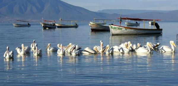 5-Hour Chapala and Ajijic Lake Tour