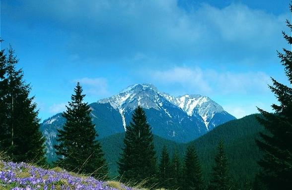 Zakopane and Tatra Mountains Day Trip from Krakow