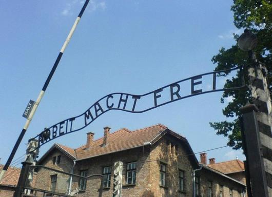 7.5-Hour Auschwitz Birkenau and Memorial Museum Guided Tour from Krakow