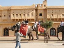 madrid day trips:8-Day India Tour to Agra, Fatehpur Sikri, Jaipur from Delhi - Golden Triangle (With Higher Hotel Level)