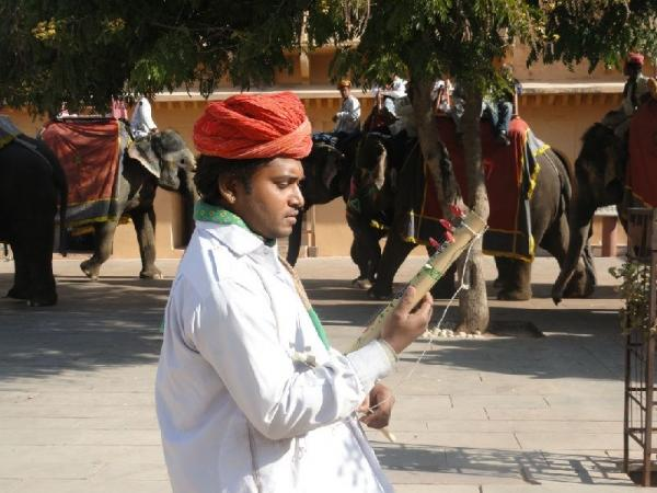 8-Day India Tour to Agra, Fatehpur Sikri, Jaipur from Delhi - Golden Triangle (With Higher Hotel Level)