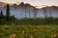 fishing day trips wa:Grand Teton National Park Full Day Tour