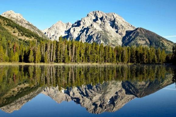 Grand Teton National Park Half Day Tour