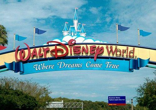 6-Day SeaWorld, 4 Disney Parks, & Busch Gardens Theme Park Tour Package from Miami