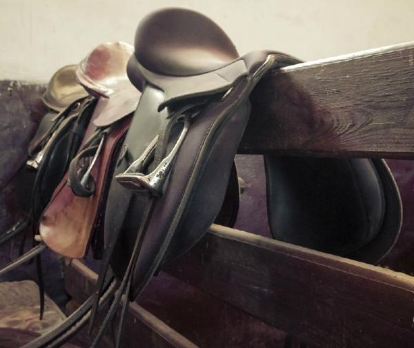 The Spanish Trail - Lunch Ride by Horseback
