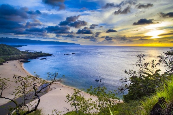 honolulu excursions:7-Day Pearl Harbor, Honolulu City, Mini-Circle Island, Polynesian Cultural Center, Maui & The Big Island Tour Package