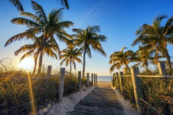 8-Day Christmas Florida Tour: Savannah, Orlando, Miami and Key West
