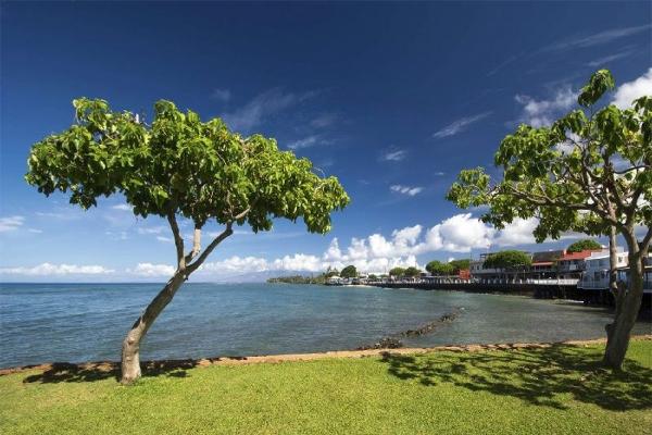 Tour to Magnificent Maui (Haleakala/Iao Valley/Lahaina)