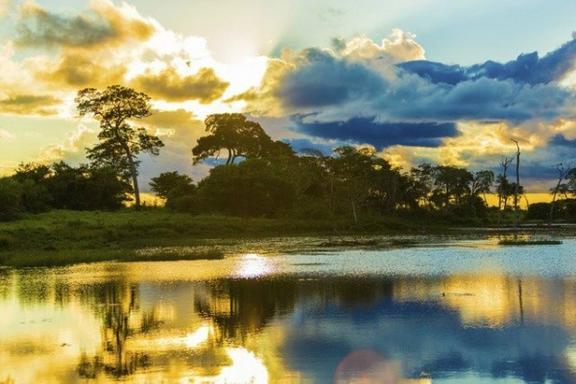 2-Day Amazon River Sleep Over Tour