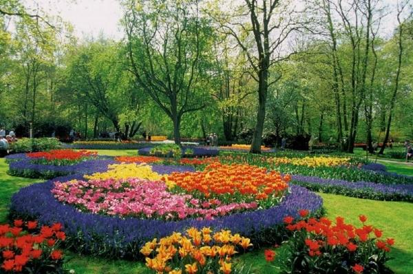 Amsterdam Flowerfields and Keukenhof Tour