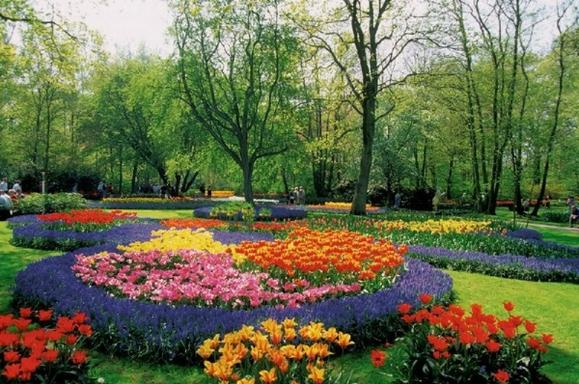 Keukenhof Tour with Bulb Farm Excursion