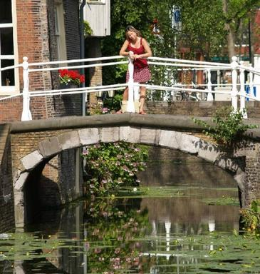 8.5-Hour Grand Holland Tour: Rotterdam, Delft and The Hague