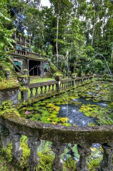 Cairns Day into Night Tour: Paronella Park - Mamu Skywalk - Josephine Falls