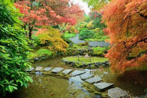 Fly'N Dine to Butchart Gardens