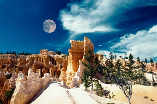 9-Day Yellowstone, Grand Teton, Bryce Canyon, Grand Canyon and Las Vegas Tour