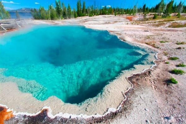 Yellowstone National Park Full Day Tour