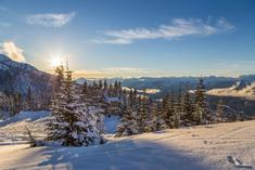 india to canada winter tourism packages:4-Day Vancouver, Victoria or Whistler Winter Tour Package