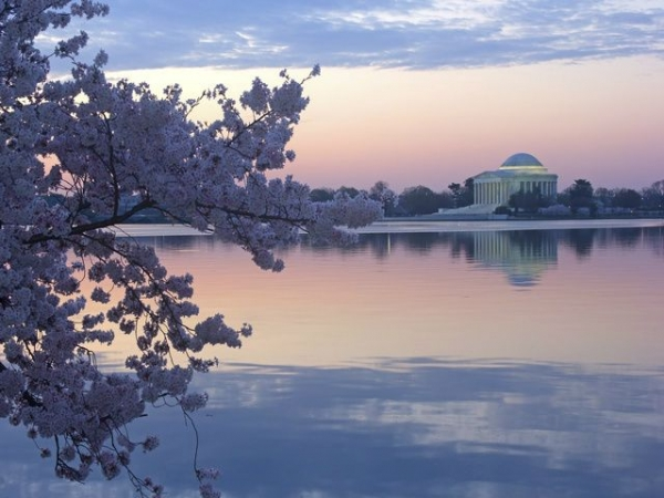 3-Day DC Cherry Blossom Tour: Longwood Garden, Woodbury Outlets