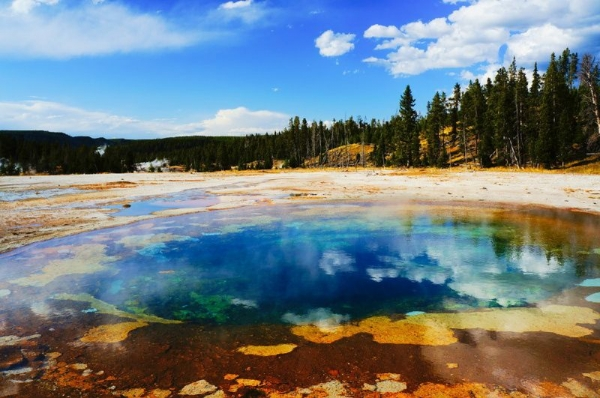 11-Day Yellowstone, Lake Powell and San Francisco Bus Tour: Bryce Canyon, Grand Canyon West Rim, Grand Teton and One Choice of Eight Items