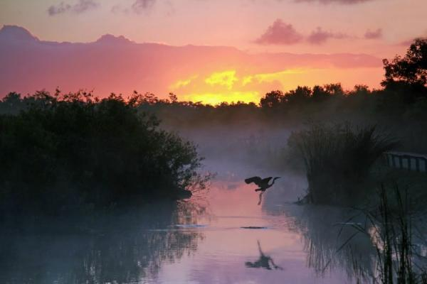 10-Day East Coast & Florida Tour From Miami: Everglades, NYC, Niagara Falls, Rhode Island & DC