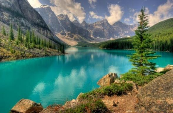 5-Day Victoria, Jasper, Calgary, Banff, Lake Louise & Canadian Rocky Mountain Tour Package