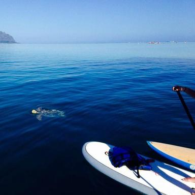 Stand-Up Paddle Board Adventure Tour