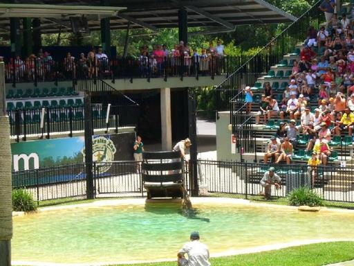 Australia Zoo Tour via Croc Express
