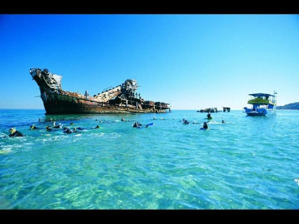 Tangalooma Dolphin Adventure Day Trip