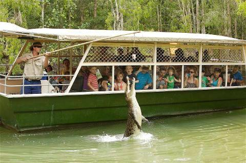 Tjapukai & Hartley's Crocodile Day Trip
