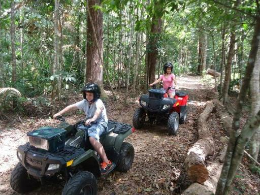 Daintree Rainforest Morning ATV Tour