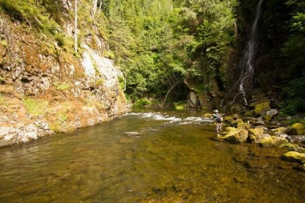 Sitka Full-Day Fly Fishing Trip