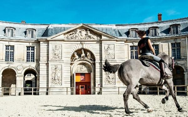 Versailles Royal Stables Behind the Scenes Tour