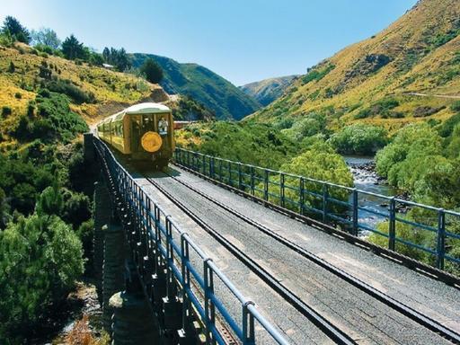Taieri Gorge Railway & Otago Peninsula Shore Excursion