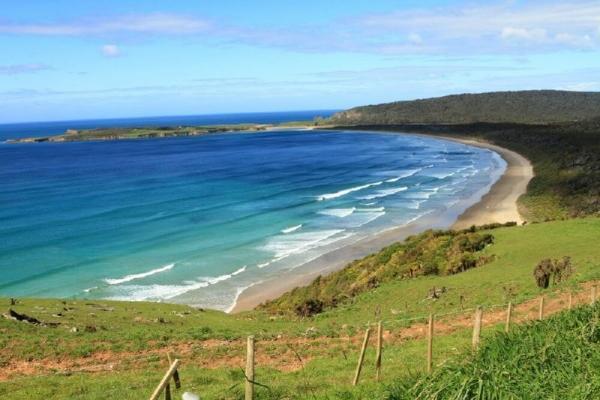 Dunedin Bays, Beaches and Views Tour