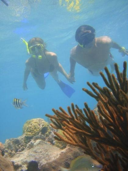 Deluxe Snorkeling Adventure with Steak Dinner